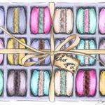 bs illustration Makronen Macarons